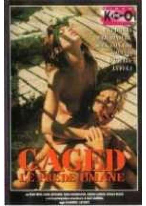 I migliori film erotici siti incontri single