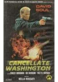 Cancellate Washington