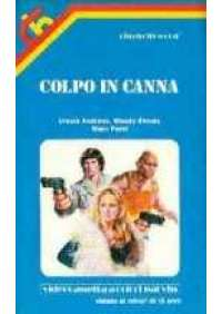 Colpo in canna
