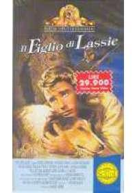 Il Figlio di Lassie