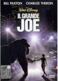 Il Grande Joe