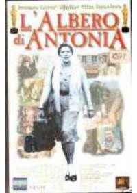 L'Albero di Antonia
