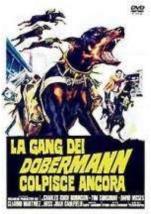 La Gang dei Dobermann colpisce ancora