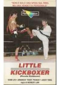 Little Kickboxer