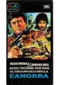 Napoli-Palermo-New York il triangolo della camorra