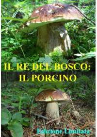Re Del Bosco (Il) - Il Porcino